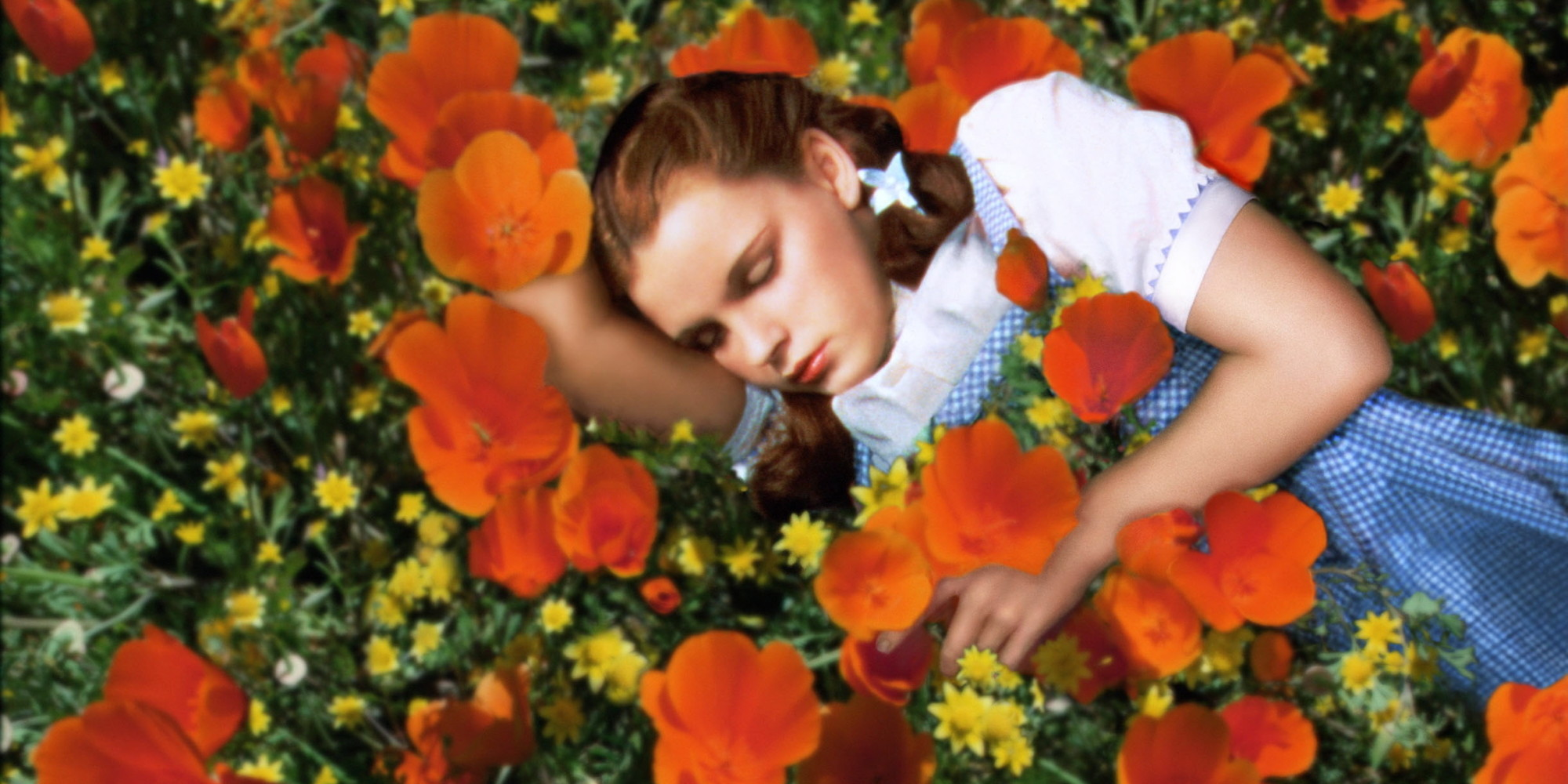 Judy Garland (1922-1969), US actress and singer, sleeping in a field of red poppies and yellow flowers in a publicity still issued for the film, 'The Wizard of Oz', USA, 1939. The musical, directed by Victor Fleming (1889-1949), starred Garland as 'Dorothy'. (Photo by Silver Screen Collection/Getty Images)